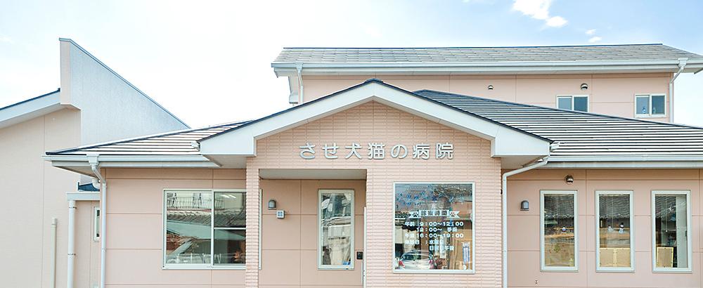 外観|栃木県佐野市の動物病院「させ犬猫の病院」